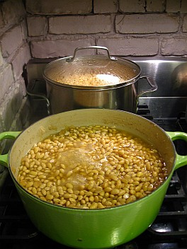 boiling beands 2012