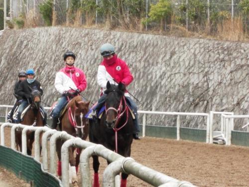 (2)グロリアスノア(追い切り前)・小林慎一郎