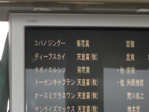 坂路モニター1
