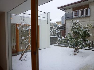 雪の降る中庭