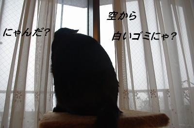 s-雪の日1