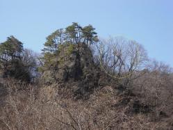 岩場とクマ棚