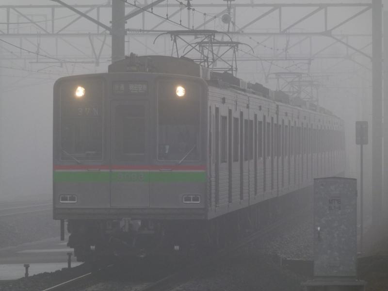 P1690322.jpg