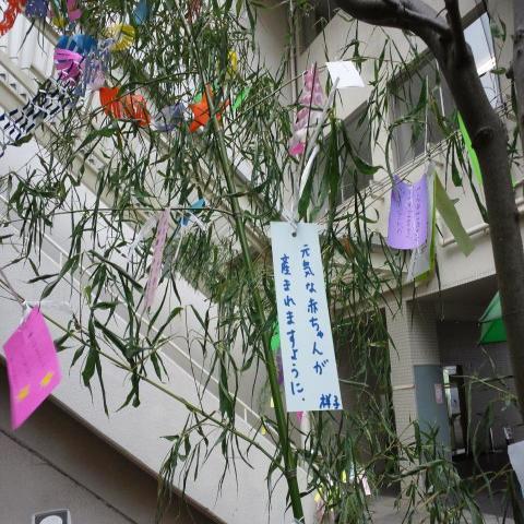 tanabata_convert_20110707184351_convert_20110707185130.jpg