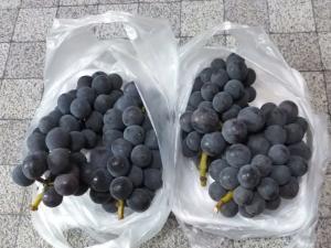 葡萄~~♪
