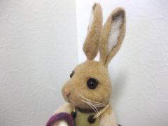 rabbit gardener