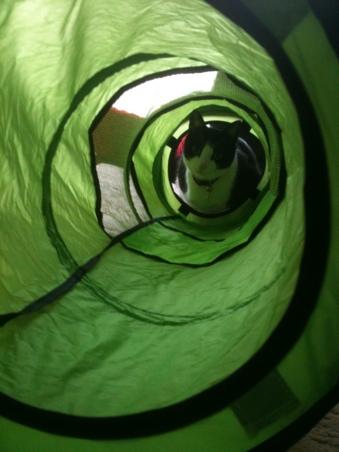 しゃかしゃかトンネル3