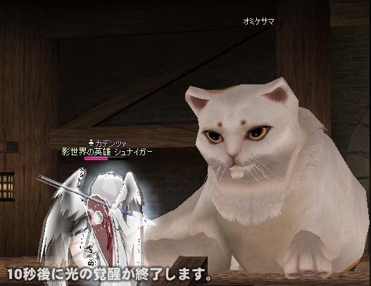 mabinogi_2010_01_01_006.jpg