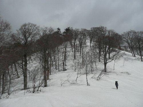 touyama 22
