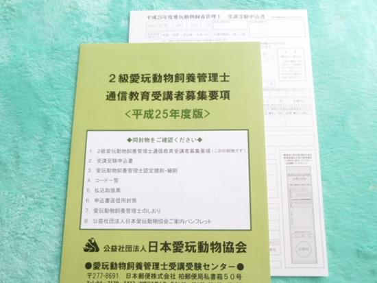 2013_03_10_04.jpg