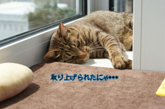10_20110731233332.jpg