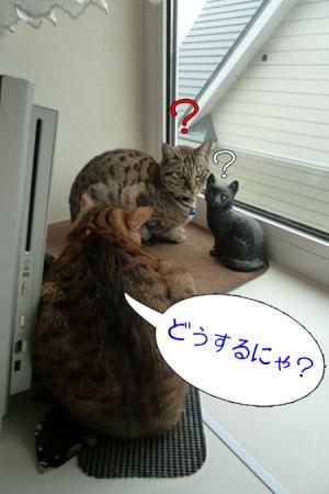 1_20110525091416.jpg