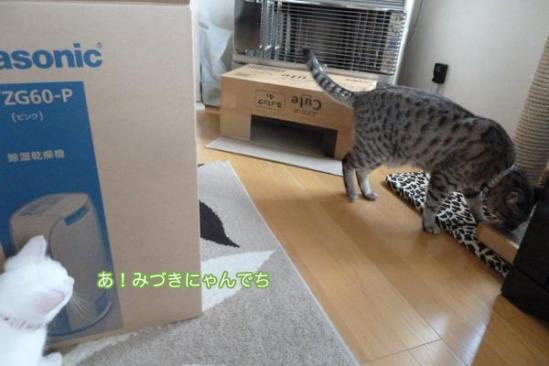 1_20110919103357.jpg
