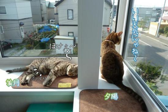 1_20111018105927.jpg