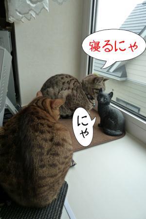 2_20110525091415.jpg