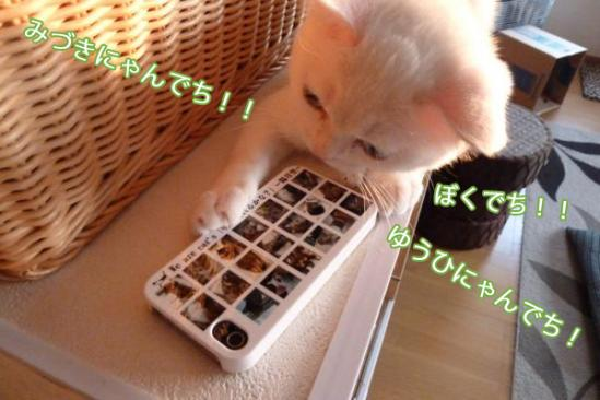 3_20110928200209.jpg