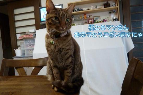 6_20111014092005.jpg