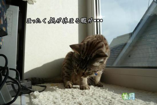 8_20110824085500.jpg
