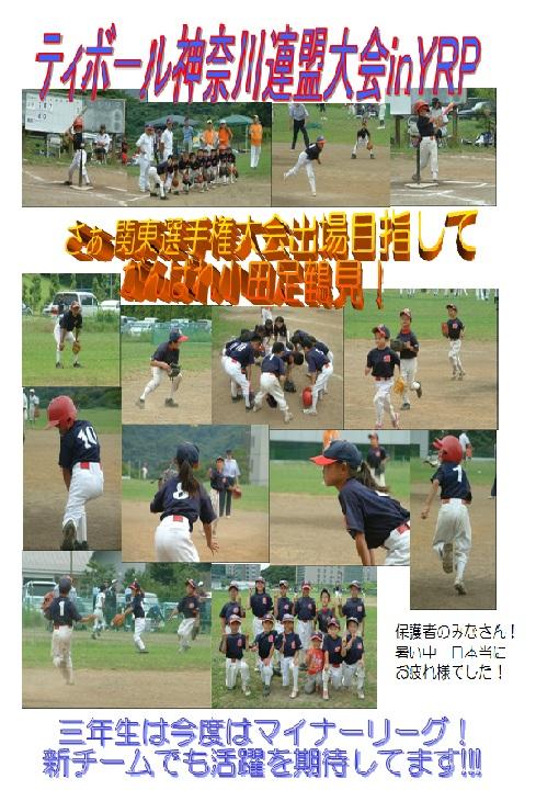 H23ティボール神奈川連盟大会ブログ