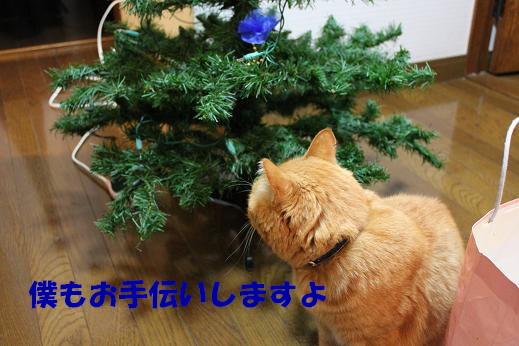 IMG_0296.jpg