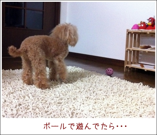 003_20110201201504.jpg