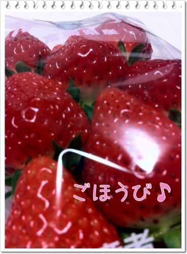 011_20110217202755.jpg