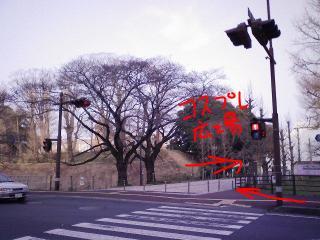 三の丸庁舎道筋