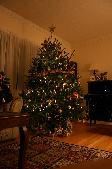 tree2010.jpg