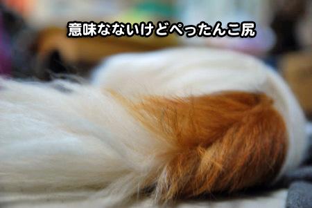 けだるい男03
