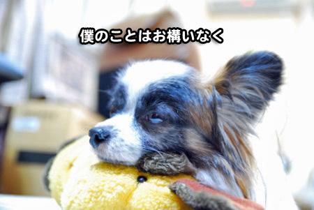 けだるい男05