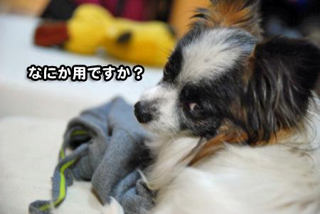 けだるい男01