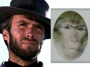 monkeyeastwood.jpg