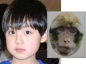 monkeyjack.jpg