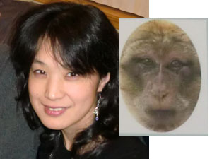 monkeykaijin.jpg