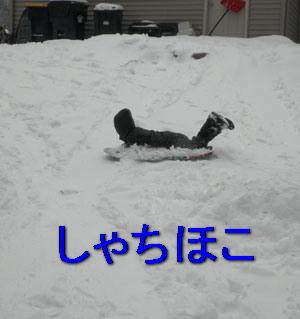 snow02051011.jpg