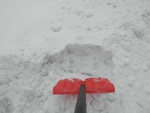 snow0205103.jpg