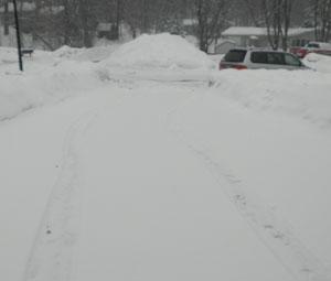 snow0205104.jpg