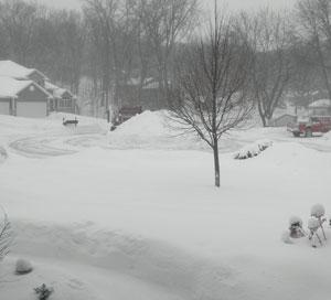 snow020810.jpg
