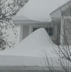 snow0209103.jpg