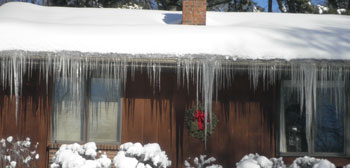snow0210105.jpg