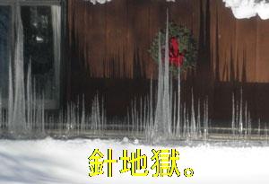 snow0210106.jpg