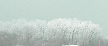 snow0212105.jpg