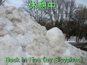 snow02141113.jpg