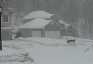 snow0220111.jpg