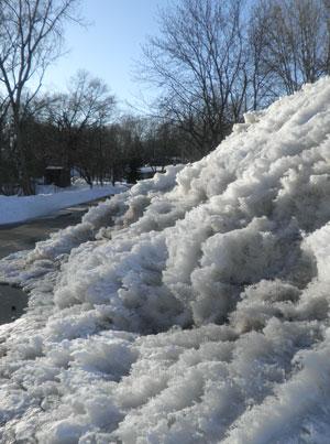 snow0301103.jpg