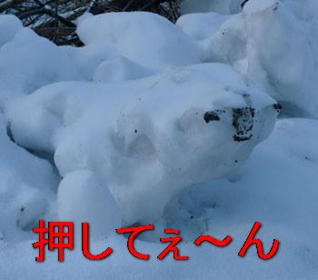 snow12021010.jpg