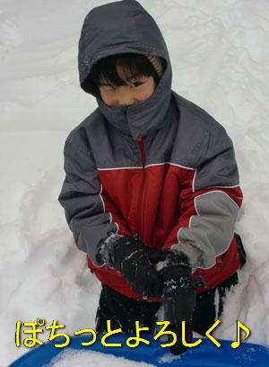 snow1218104.jpg