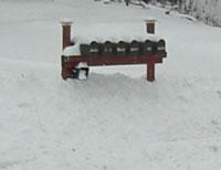 snow1224093.jpg