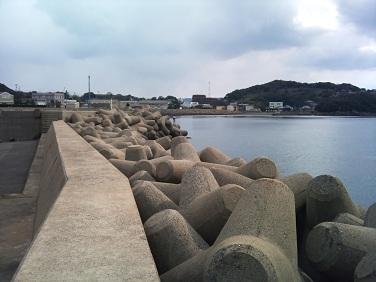 20120219大島釣り (3)