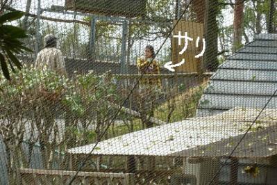 20120320大牟田市動物園 (3)